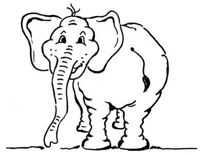 proktologiepraxis-frankfurt-elefant
